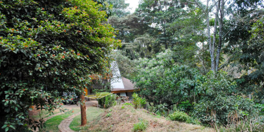 4 Bedroom Charming House on Arboretum Drive (off State House road)